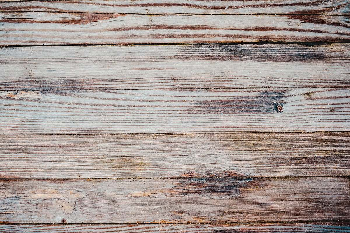 stock photos free  of background close up photo of brown wooden flooring wood