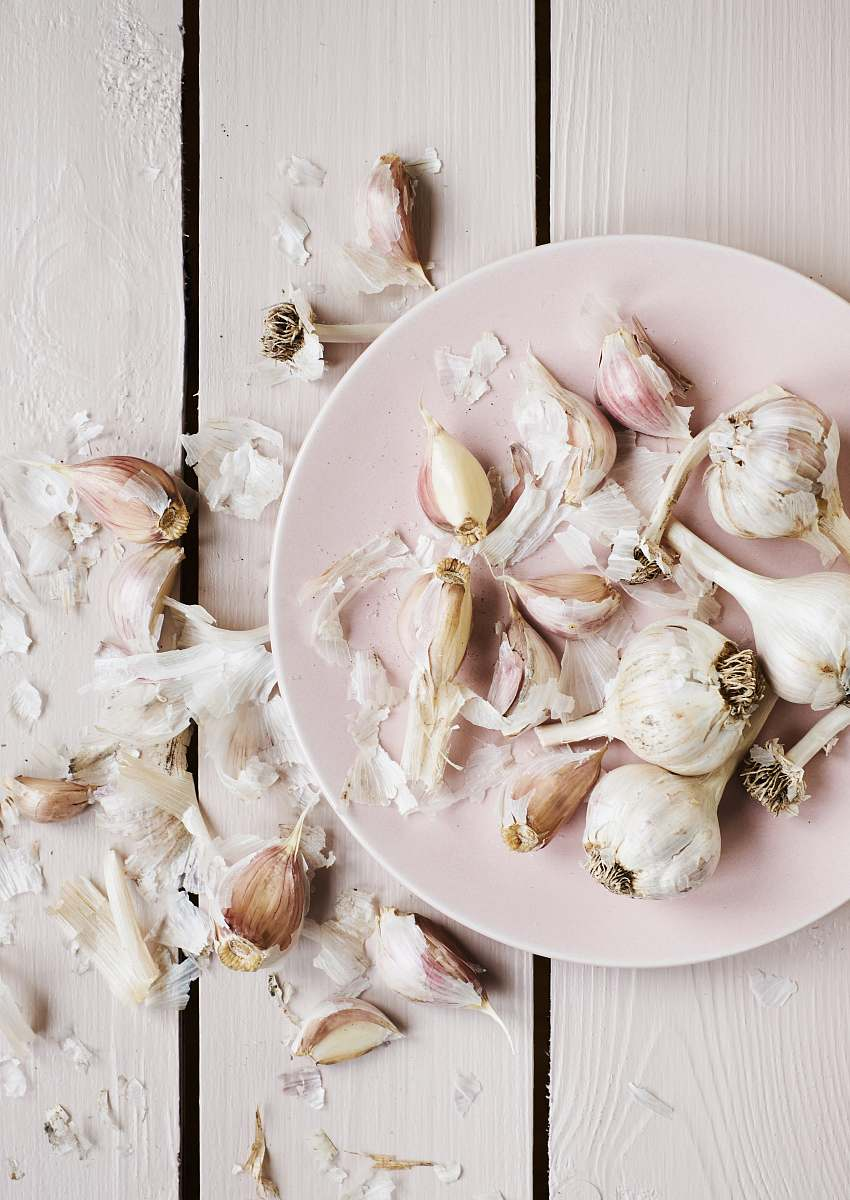 stock photos free  of meal garlic cloves on round white plate dish