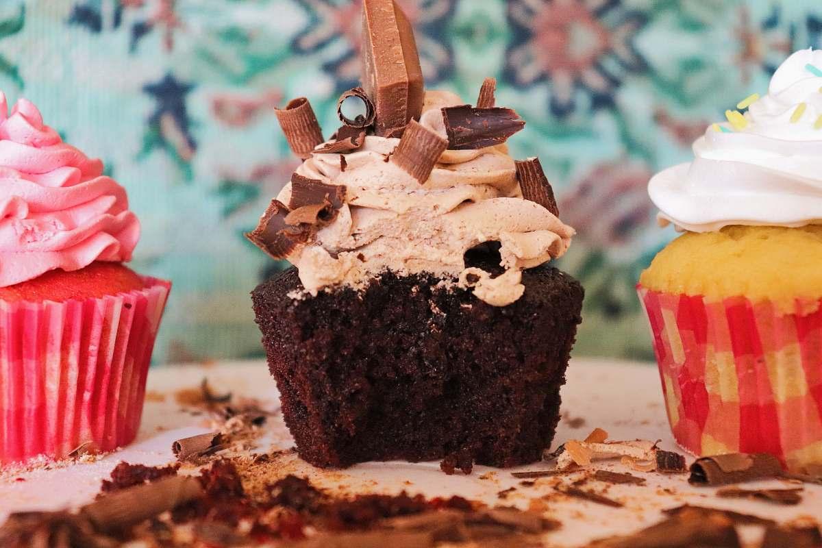stock photos free  of dessert selective focus photography of chocolate cupcake cake