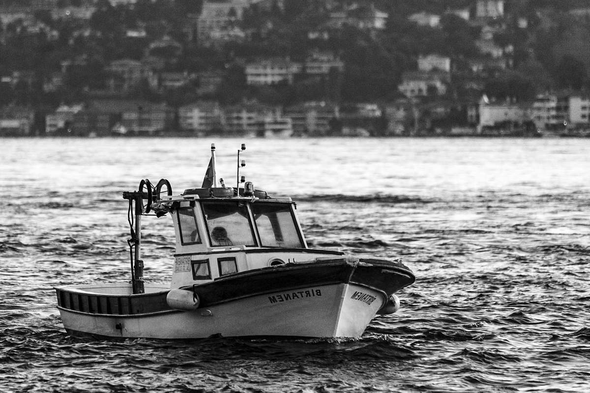 stock photos free  of transportation grayscale photo of sailboat vehicle