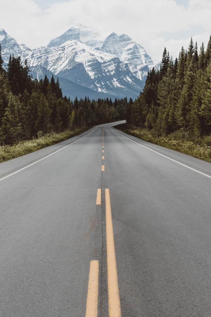 stock photos free  of highway gray pavement road surrounded by trees taken at daytime travel