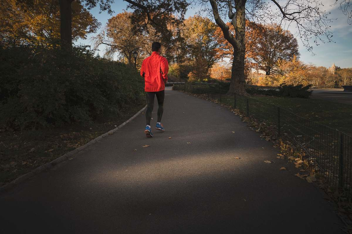 stock photos free  of people person jogging near park during daytime human