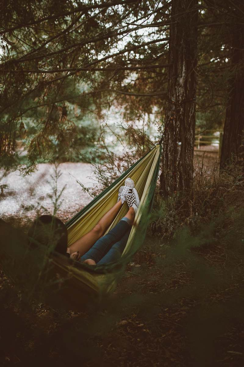 stock photos free  of camping person on yellow hammock hanging on tree people