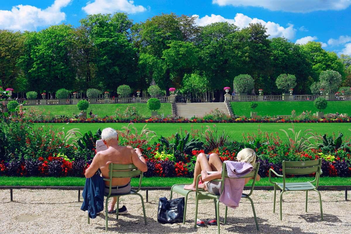stock photos free  of garden man sitting on green chair reading book sunbathing