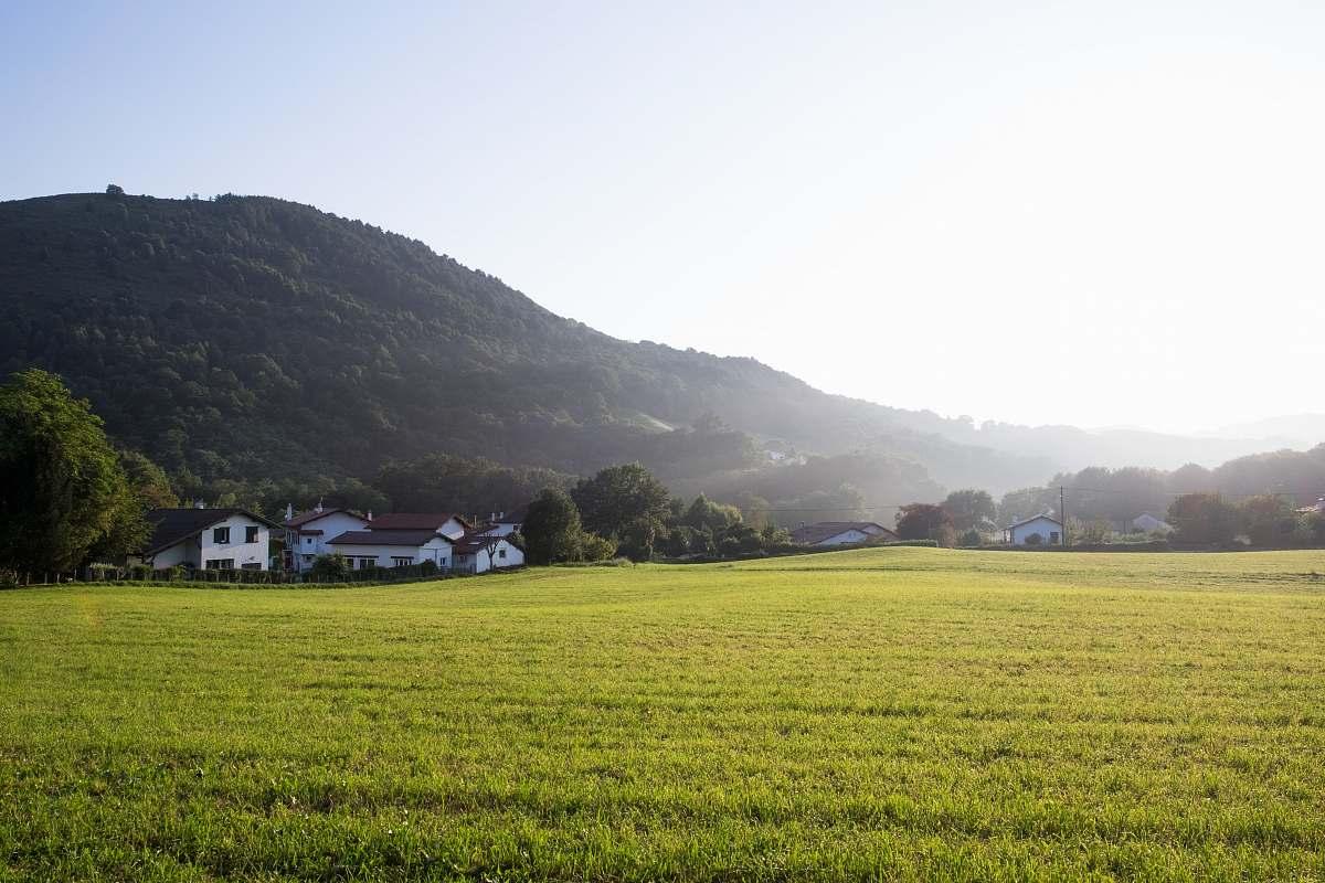 stock photos free  of outdoors green grass field field
