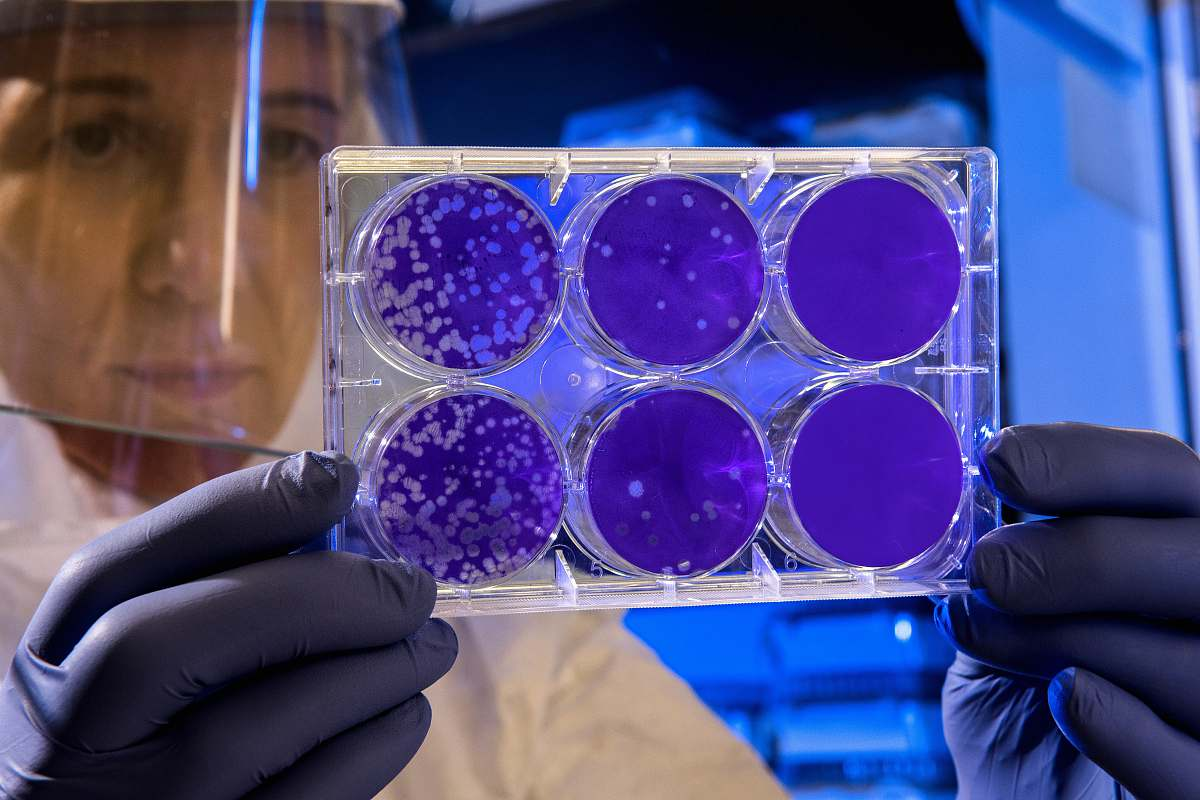 stock photos free  of medical woman holding laboratory appratus public health