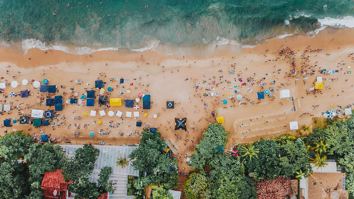 stock photos free  of aerial photography of trees beside seashore during daytime