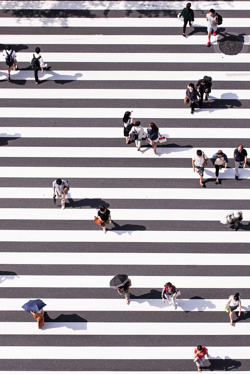 stock photos free  of aerial view photography of group of people walking on gray and white pedestrian lane