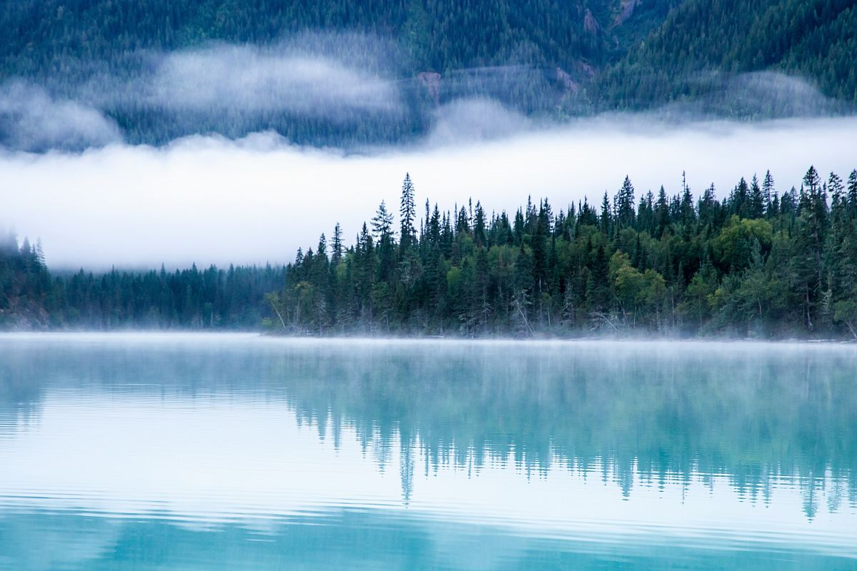 stock photos free  of body of water surrounding with trees