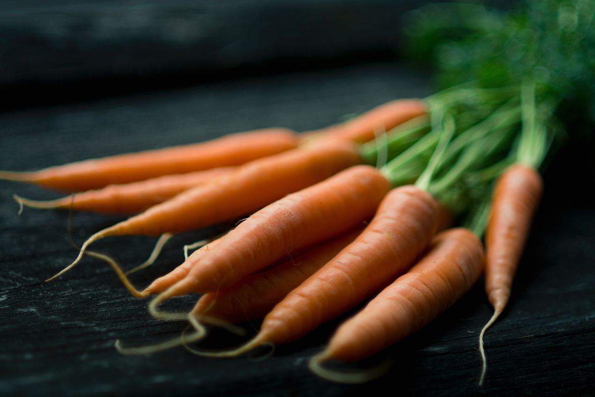 stock photos free  of carrots on table
