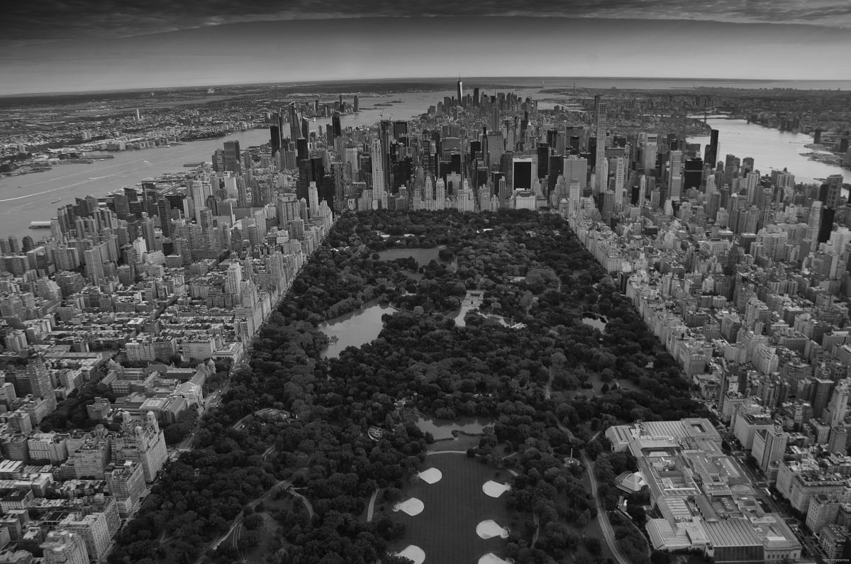 stock photos free  of grayscale photo of Central Park, New York