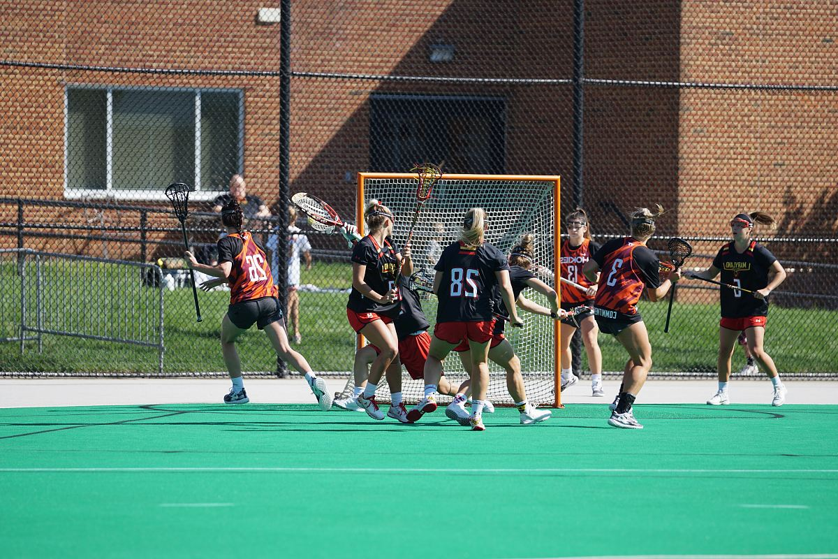 stock photos free  of group of woman playing lacrosse during daytime