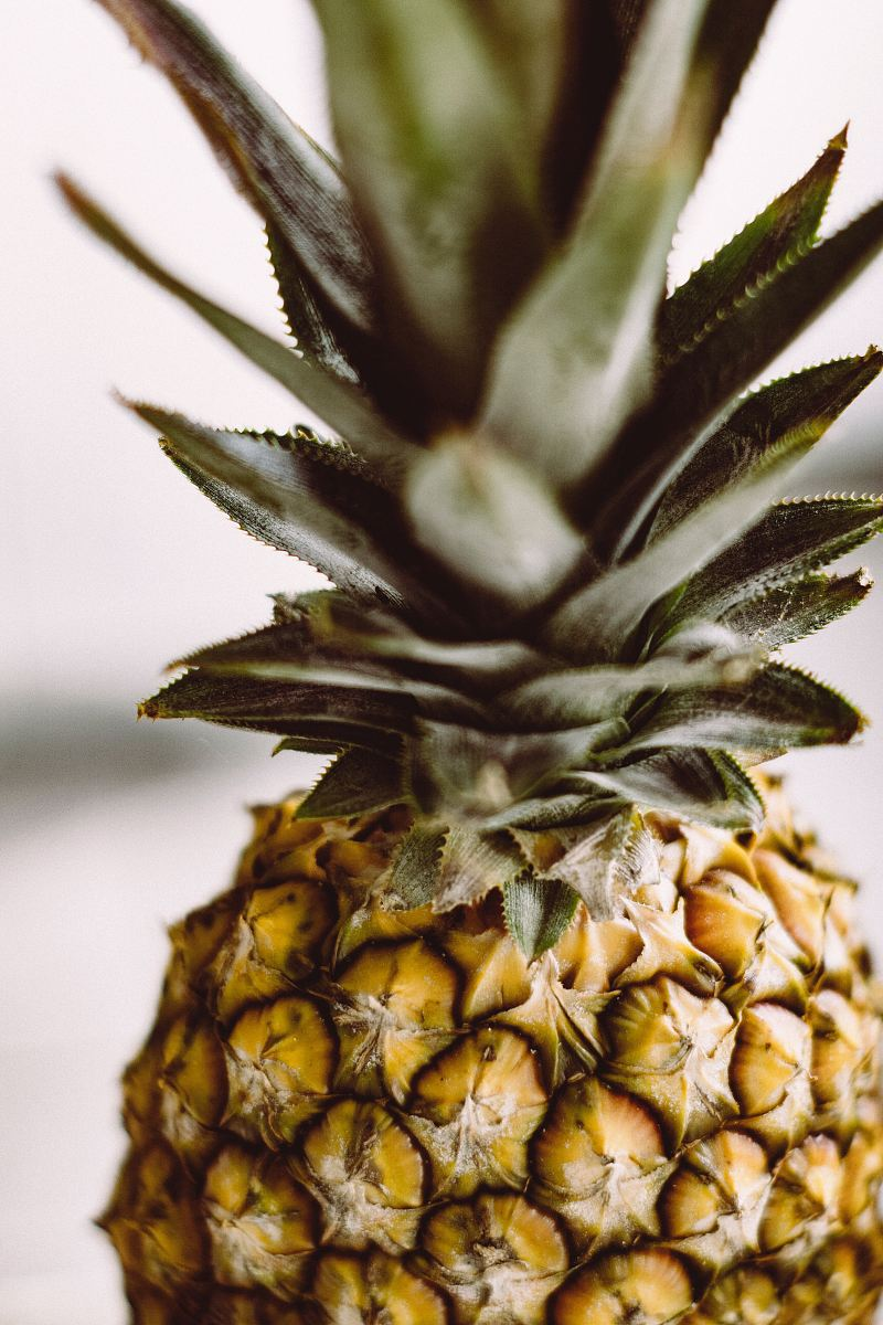stock photos free  of shallow focus photography of pineapple