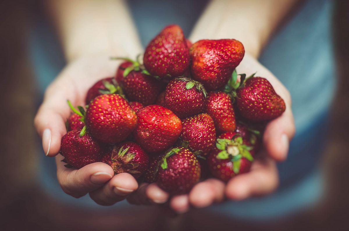 stock photos free  of shallow focus photography of strawberries on person's palm