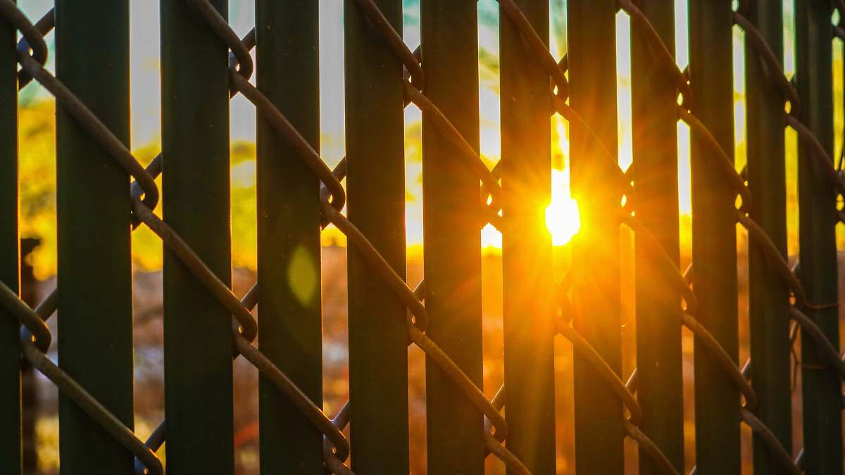 stock photos free  of flare black grill with link fence against the sun light