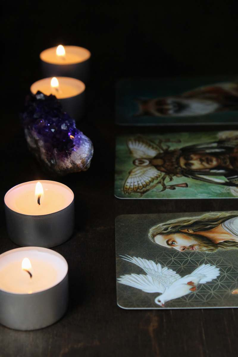 stock photos free  of animal white candle on black table fish