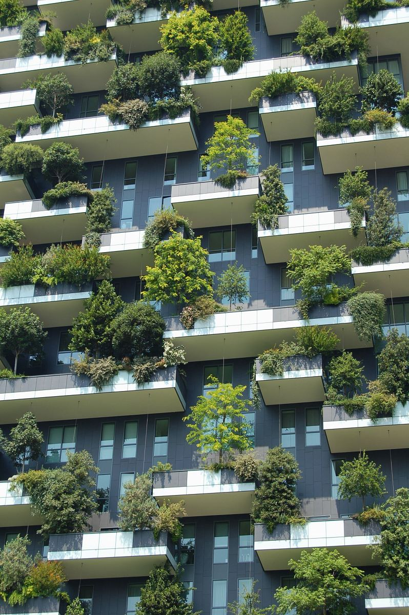stock photos free  of low angle photo of gray building with green plants