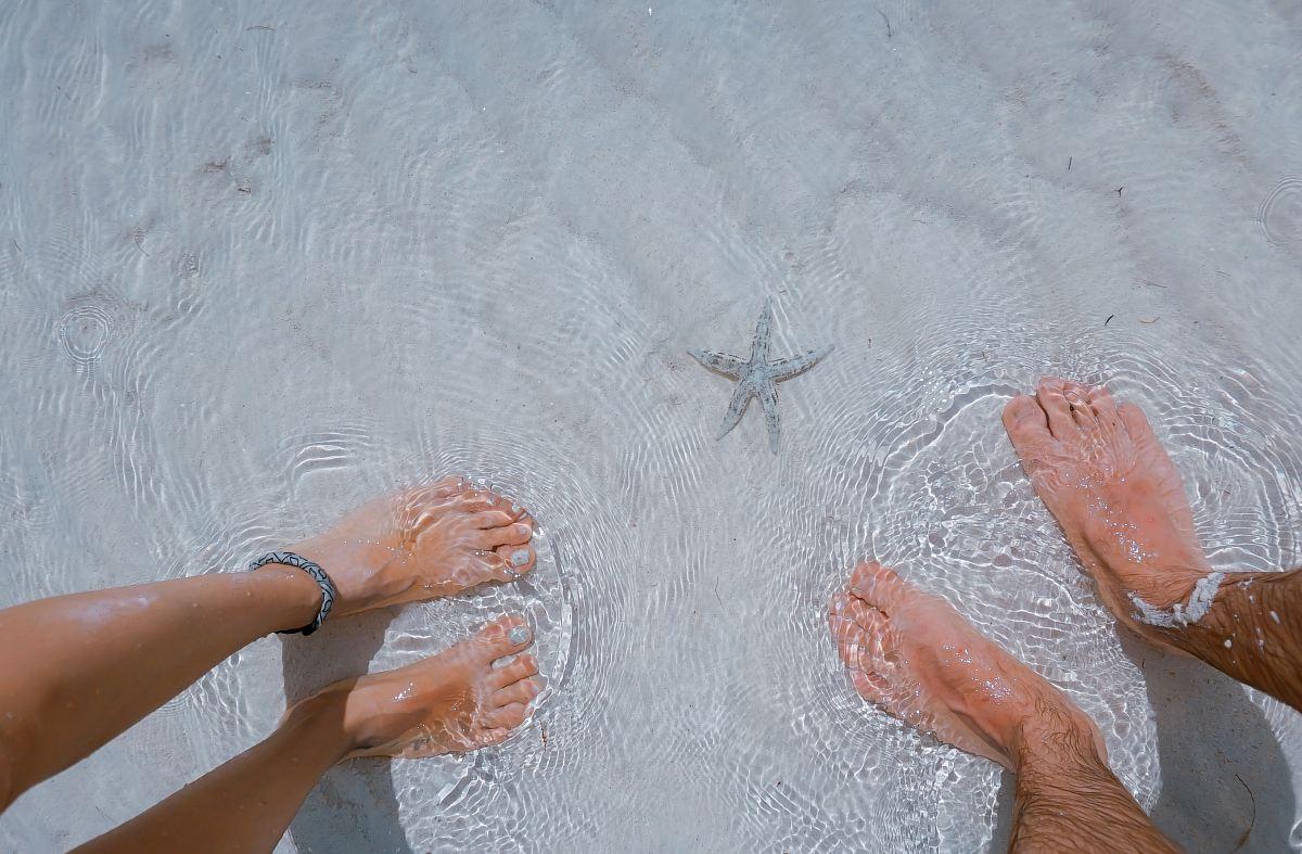 stock photos free  of man and woman on seashore nearby starfish
