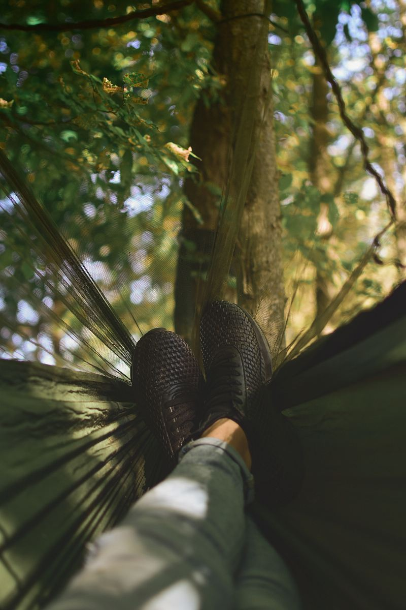 stock photos free  of person on camping hammock tied on tree