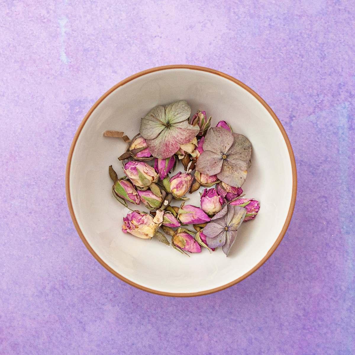 stock photos free  of art pink-petaled flower on white ceramic bowl pottery