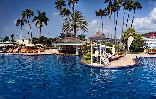 summer photo of gazebo and green palm trees scenry hotel