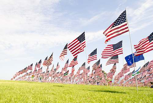 emblem U.S.A flags on green grass field during daytime united states