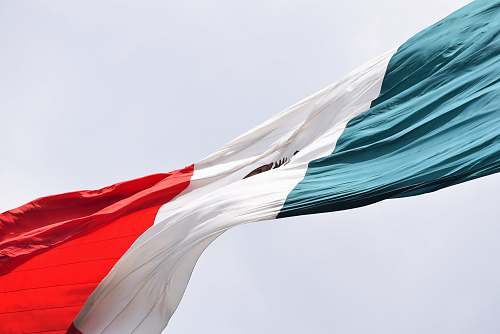 symbol waving Mexico flag during daytime animal