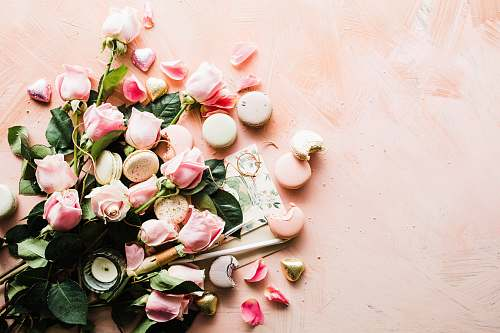 food flat-lay photography of macaroons and pink rose flowers pink