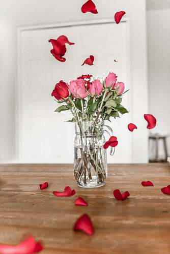 jar pink and red roses on clear glass vase vase