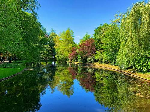 water green trees and lakes scenery outdoors