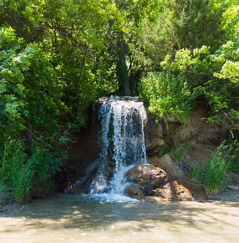 water waterfall between plants outdoors