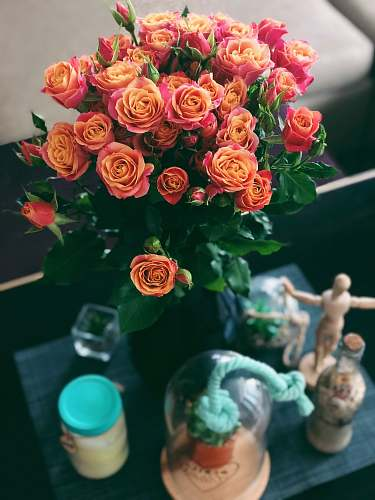 rose rose bouquet and clear glass jar person