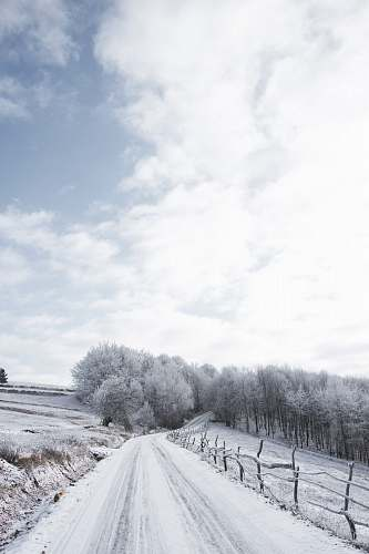 nature white wooden house near trees under white clouds and blue sky during daytime ice