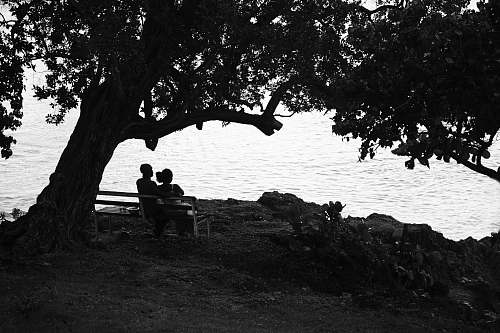 furniture grayscale photography of couple sitting on bench plant