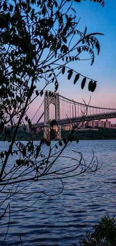 bridge bridge over water during daytime suspension bridge