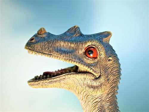 toy close-up photo of Dinosaur figurine reptile