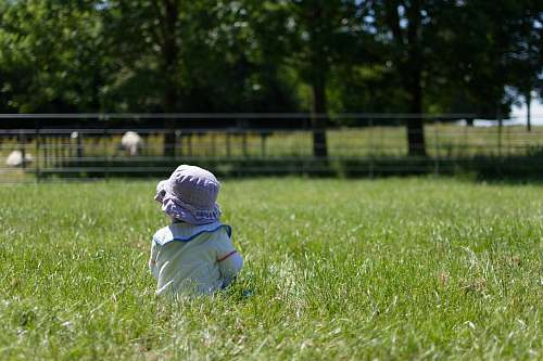 clothing toddler standing on the green grass field grass