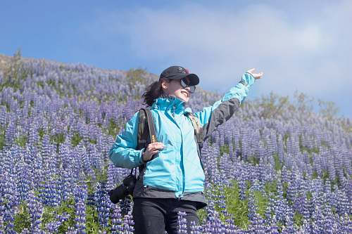 flower unknown person standing on lavender flower field lupin