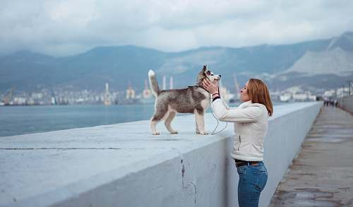 people woman standing while holding Syberian Husky puppy near sea person