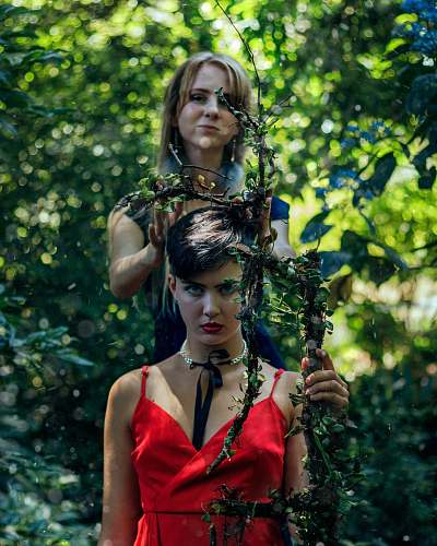 plant two woman holding twigs surrounded by trees during daytime vegetation
