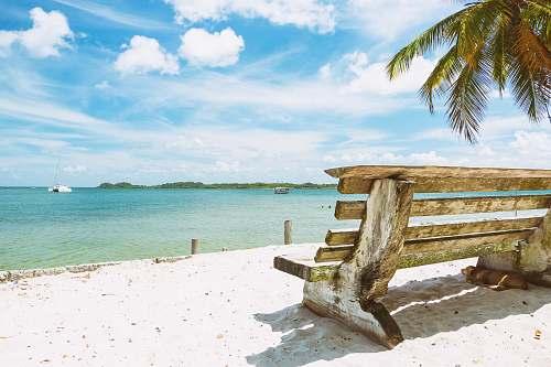water brown wooden bench on white beach sand ocean