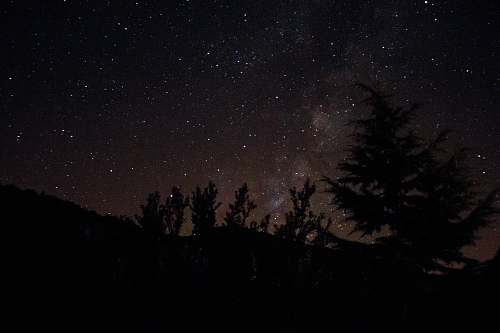 france silhouette photography of pine trees during night time milky way