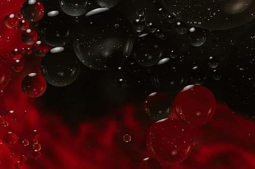 bubble time-lapse photography of bubbles plant