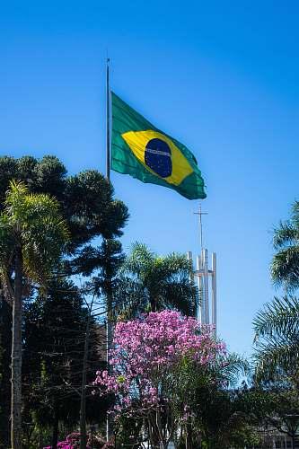 symbol green and yellow flag on pole erechim