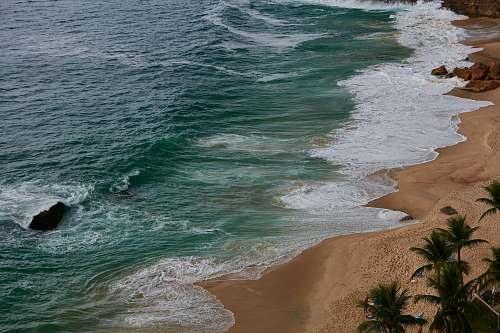 beach ocean waves near palm trees ocean