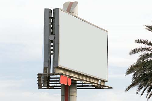 tree rectangular blank billboard dubai