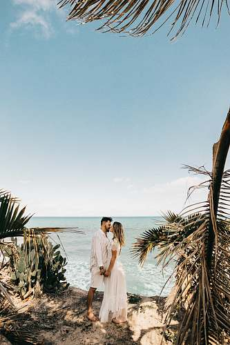 clothing man and woman standing near coconut tree plant