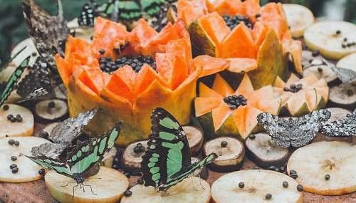 fruit two butterflies near papaya fruit food