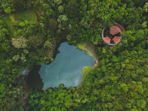 brazil bird's eye photography of body of water and trees free university of the environment - unilivre