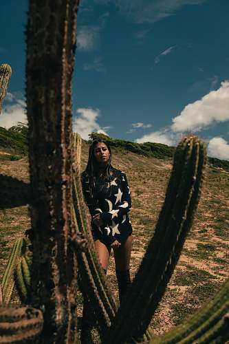 person woman standing beside cactus plant